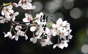 志太温泉 潮生館